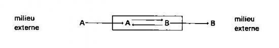 sans-titre-198.png
